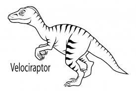 Velociraptor dibujo  Dinosaurios
