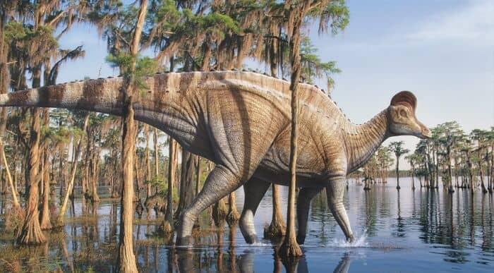 El hábitat natural del Corythosaurus