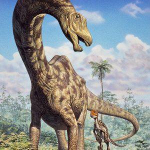 Seismosaurus – dinosaurio gigante