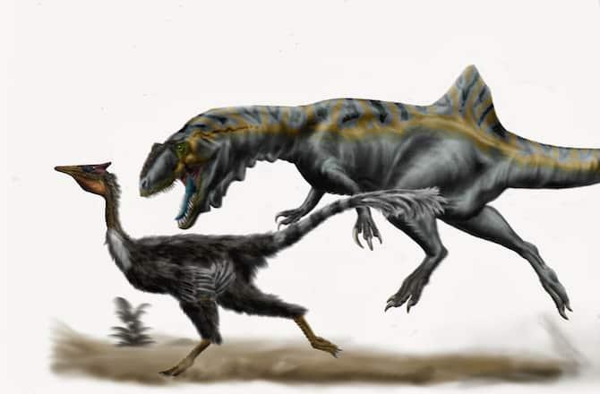 fastest-dinosaurs-10--160127