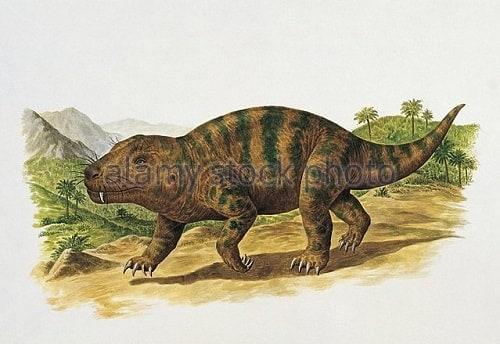 Metriacanthosaurus El Cynognathus: el ant...