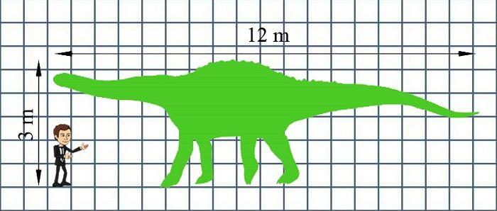 Tamaño del Saltasaurus