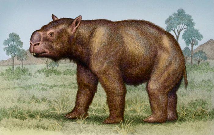 Extinción del Diprotodon