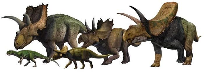 Familia de Ceratópsidos