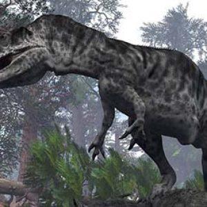 Giganotosaurus – dinosaurio gigante